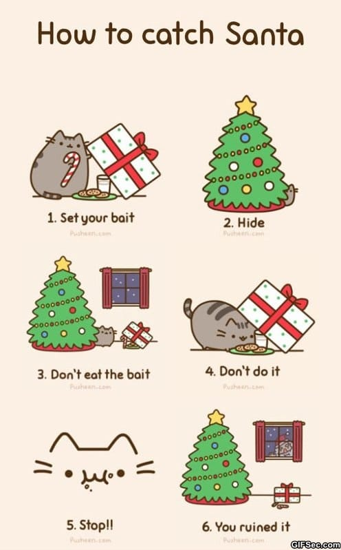 funny-pictures-how-to-catch-santa