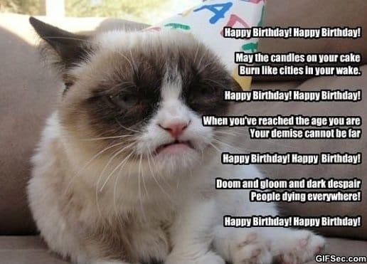 lol-birthday-wishes-from-grumpy-cat