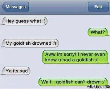 SMS - Poor Goldfish