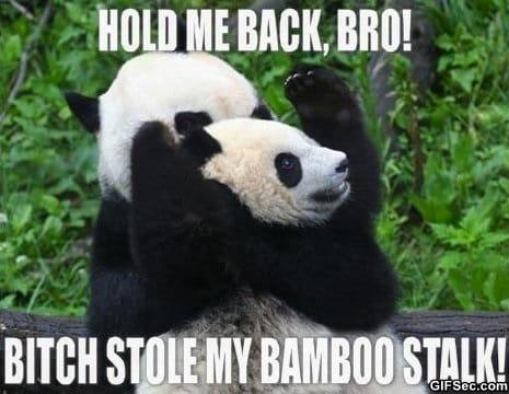 Funny - Come at me bro