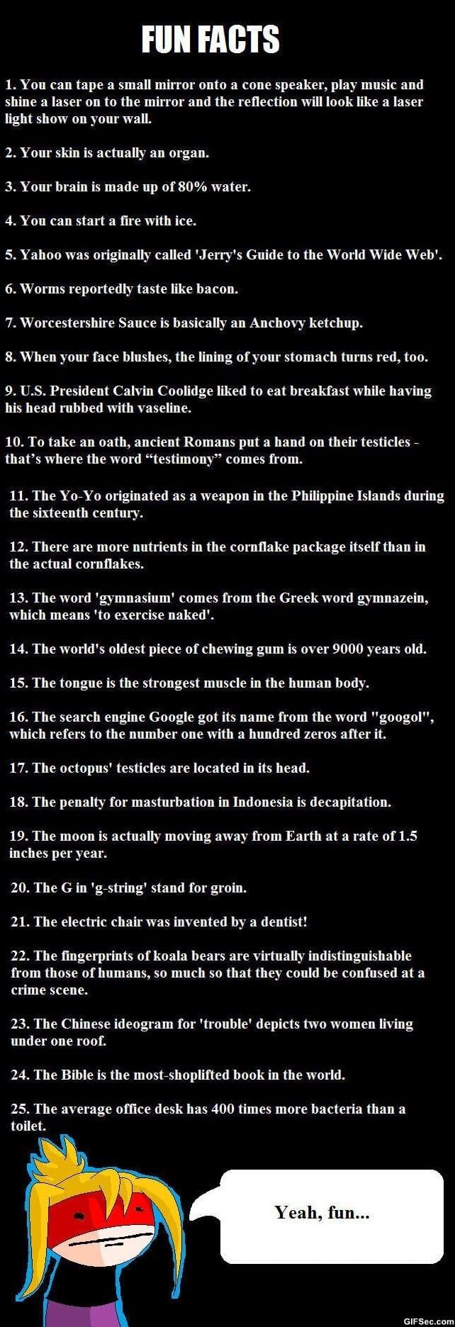 funny-fun-facts