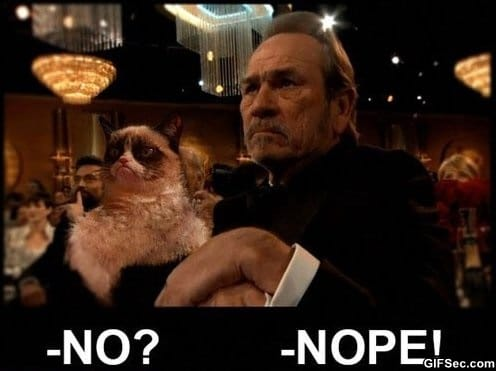 LOL - Grumpy Cat and Tommy Lee Jones