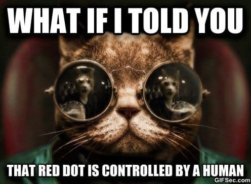 MEME - Morpheus Cats Revelation