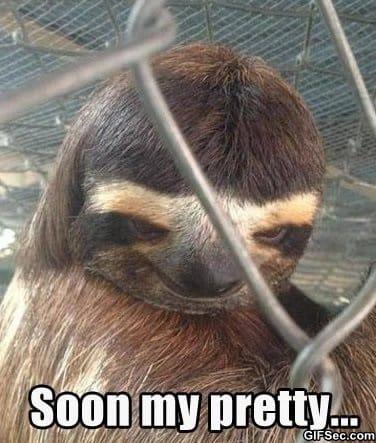 Creepy sloth whisper - photo#4