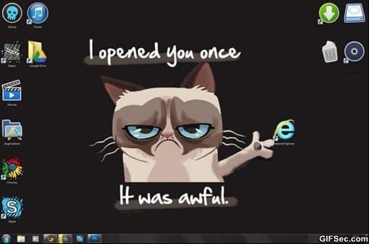 funny-grumpy-cat-vs-internet-explorer