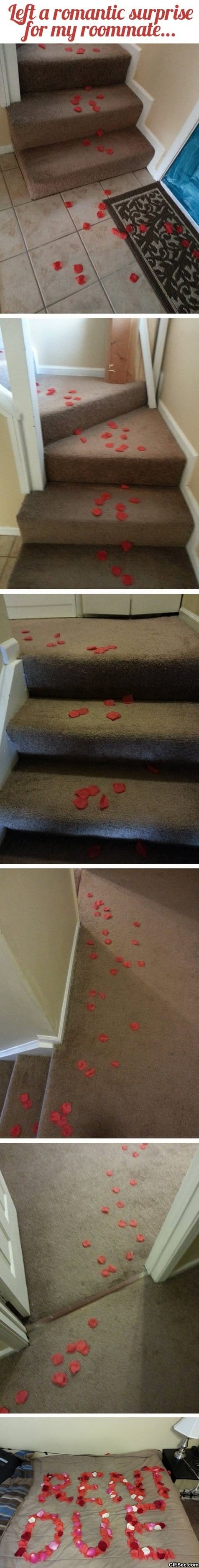 Funny - Romantic Surprise