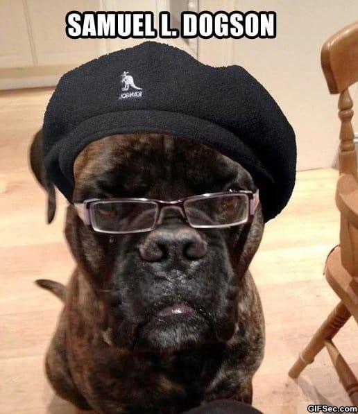 funny-samuel-l-dogson