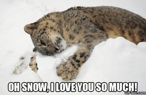 Funny - Snow lover