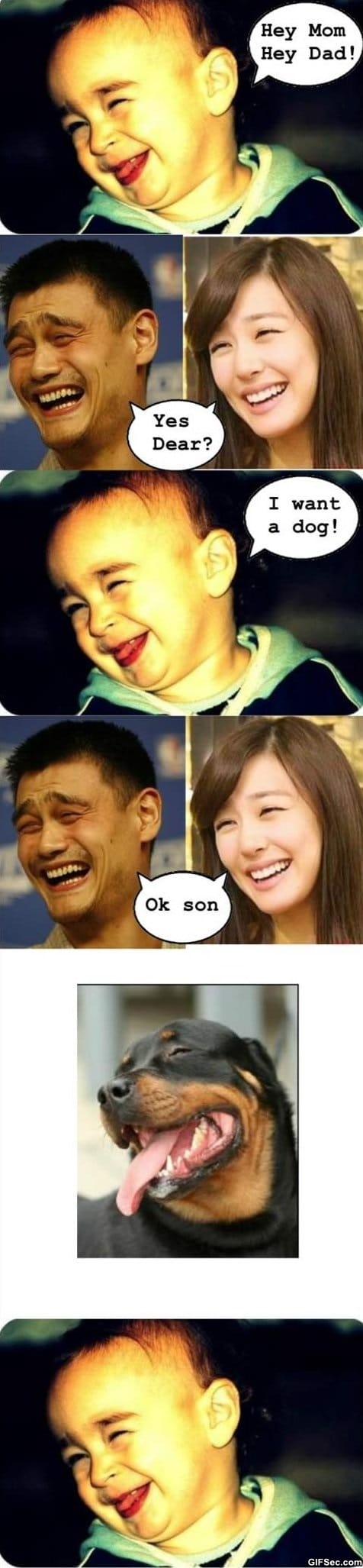 Funny - Yao Ming MEME