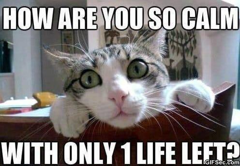 1 life left