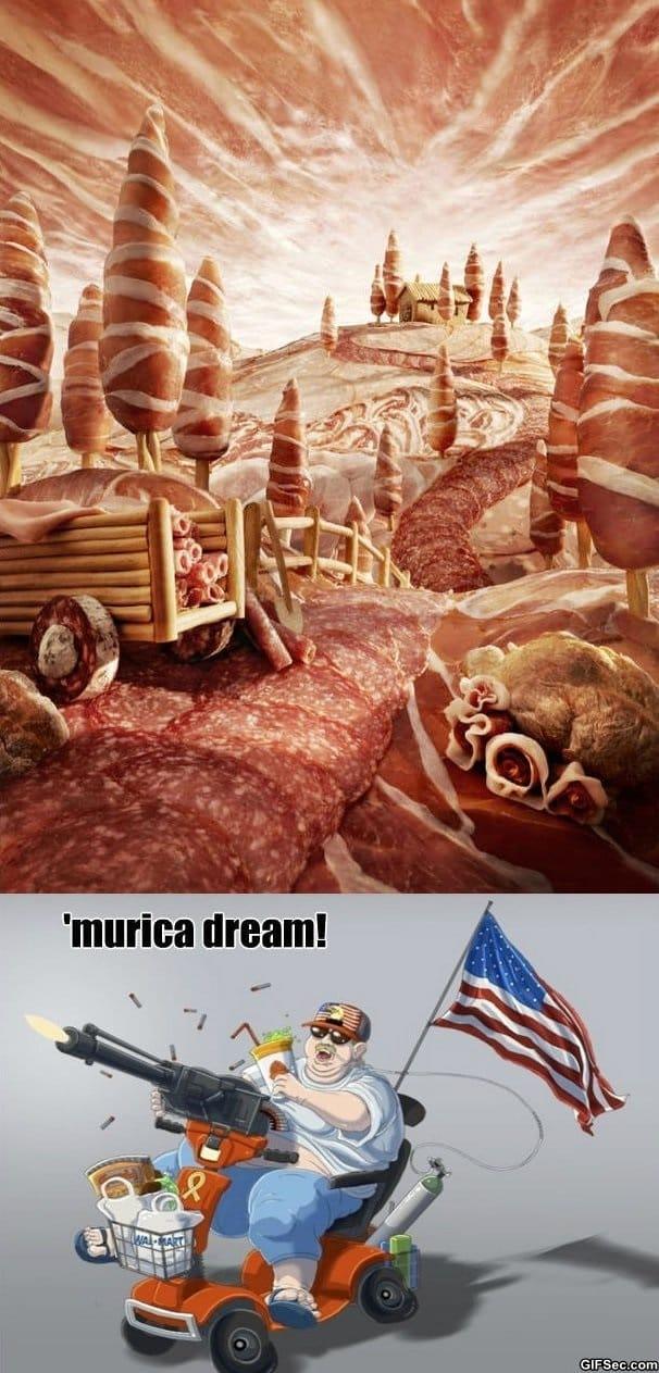 Funny - Murica Wonderland