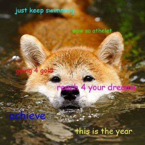[Image: Doge-MEMES.jpg]
