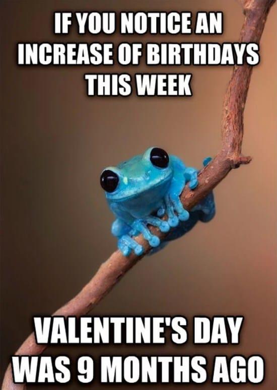 Fun fact frog 2014