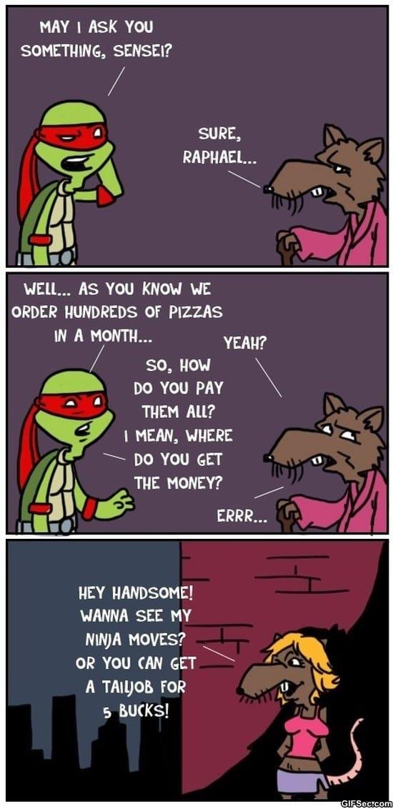 lol-pics-the-turtles