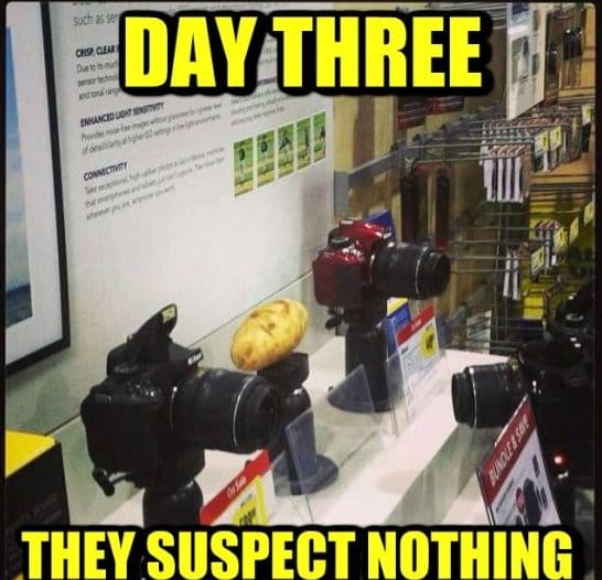 they-suspect-nothing