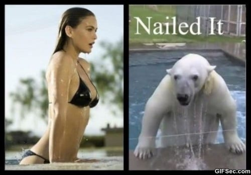 nailed-it