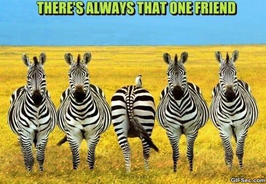 that-one-friend-memes