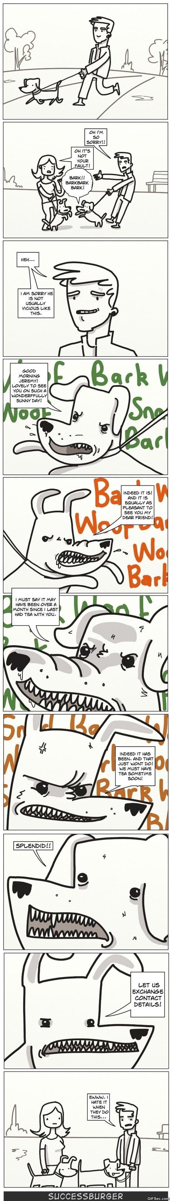 funny-comics