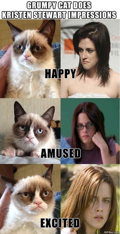grumpy-cat-vs-kristen-stewart-impressions