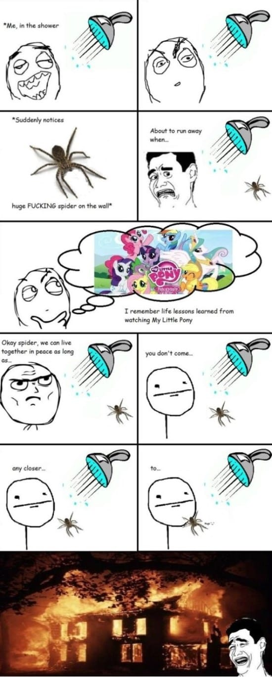 rage-comics-spiders