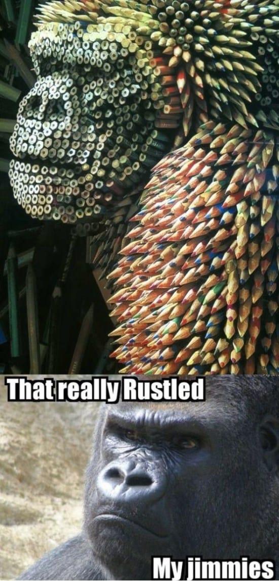 rustled-my-jimmies-again