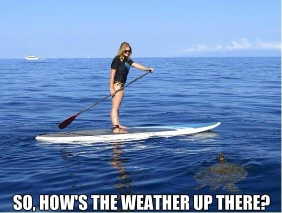weather-seems-good