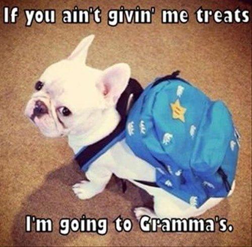 not-givin-me-treats
