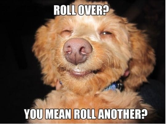 roll-another