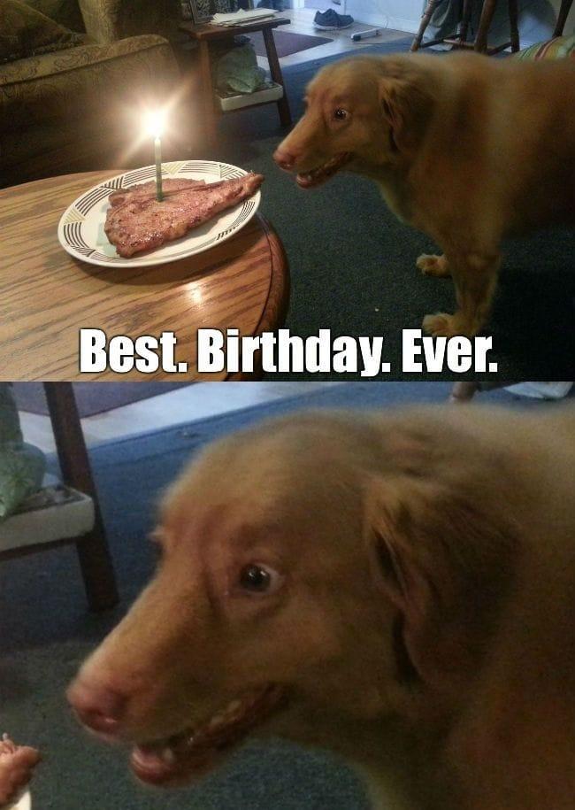 best-birthday-ever