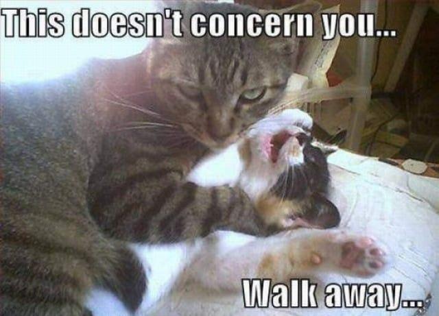 doesnt-concern-you