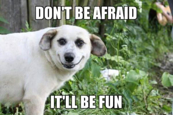 dont-be-afraid-funny