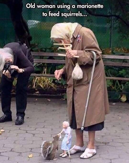 feeding-squirrels