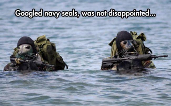 googled-navy-seals
