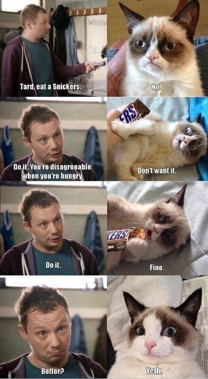 grumpy-cat-eats-snickers