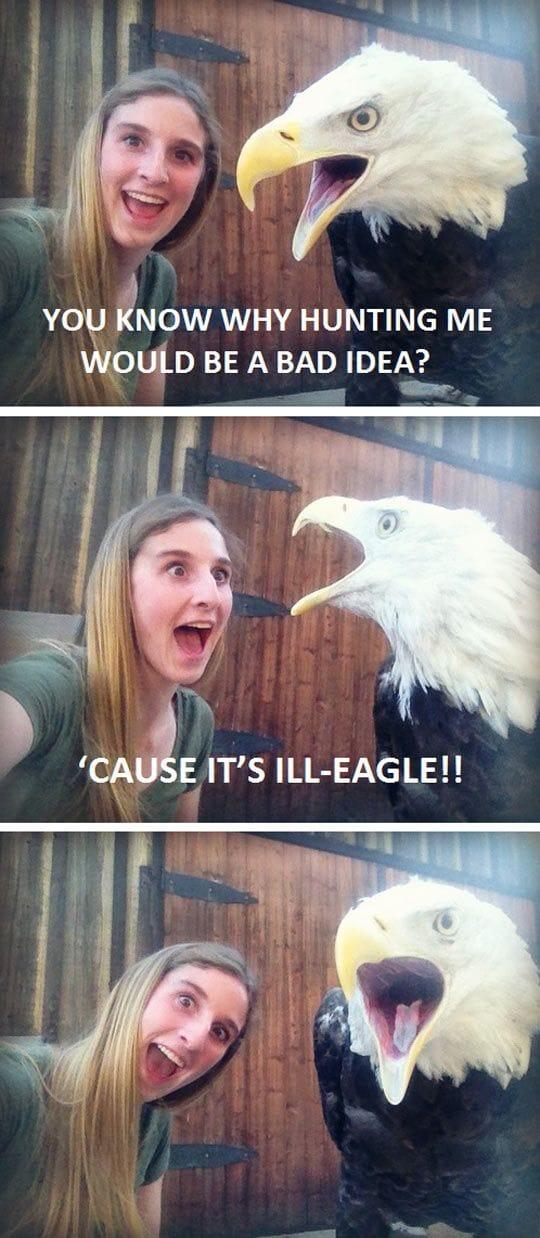 ill-eagle