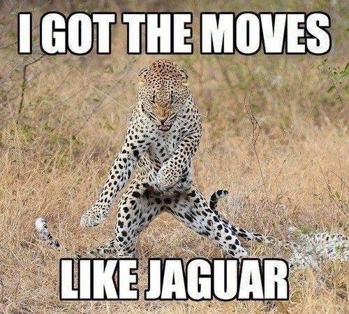 moves-like-jagger