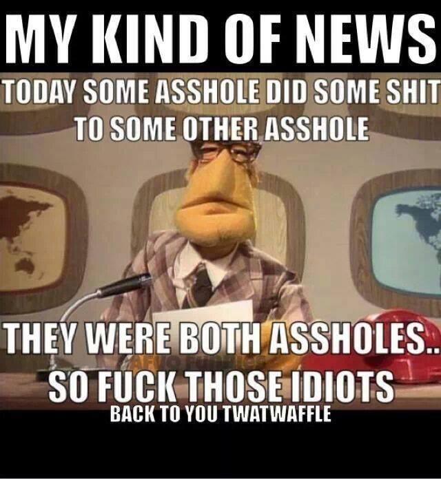 my-kinda-news