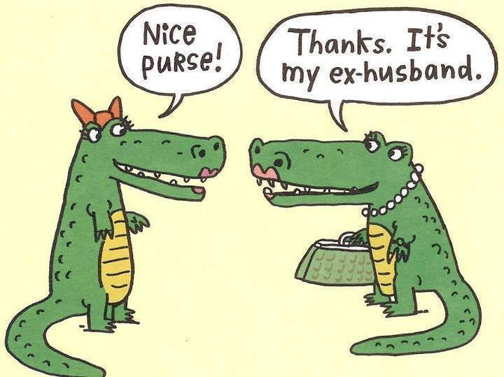 nice-purse