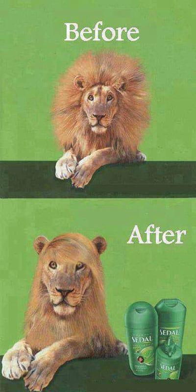 shampoo-advertisement-funny