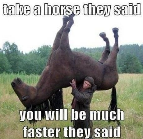 take-a-horse-they-said