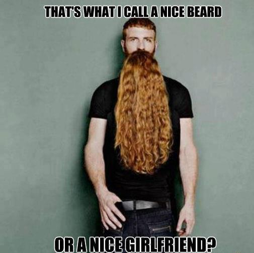 that-a-nice-beard