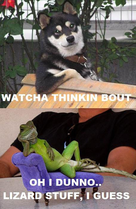 watcha-thinkin-about