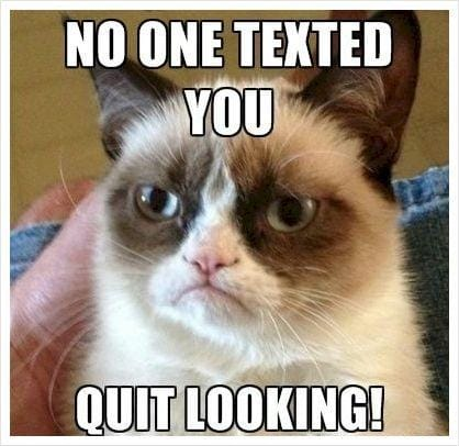 quit-looking