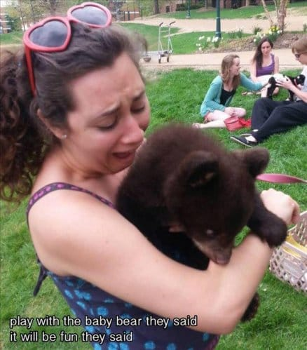 play-with-the-bear-they-said