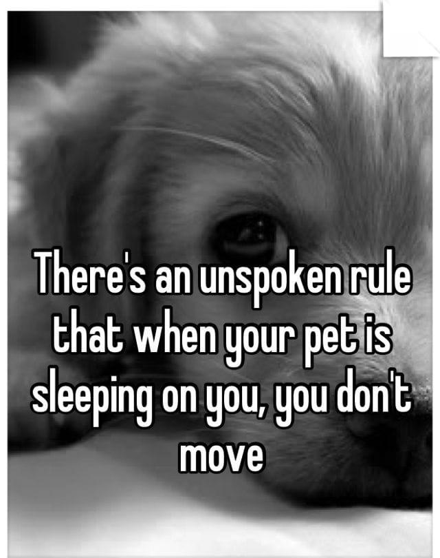 the-unspoken-rule