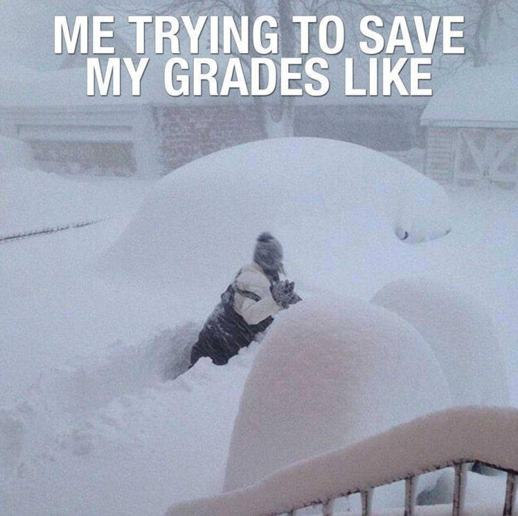 trying-to-save-my-grades