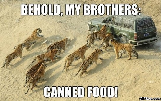 funny-pictures-canned-food