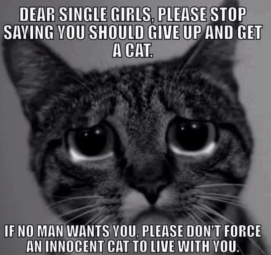 funny-single-girls-meme-jokes