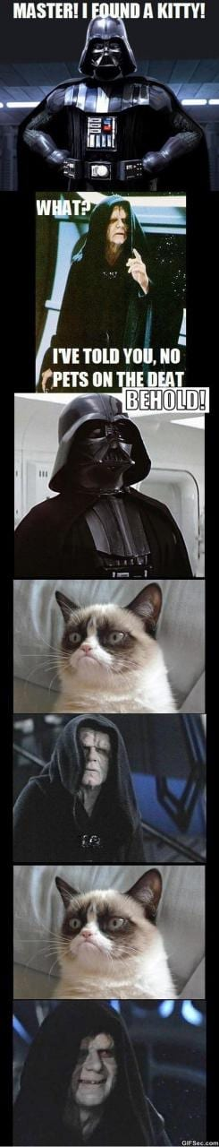 grumpy-cat-vs-the-dark-side-meme-2015