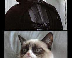 lol-grumpy-cat-vs-the-dark-side